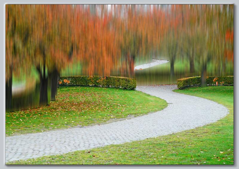 parc aux couleurs d'automne
