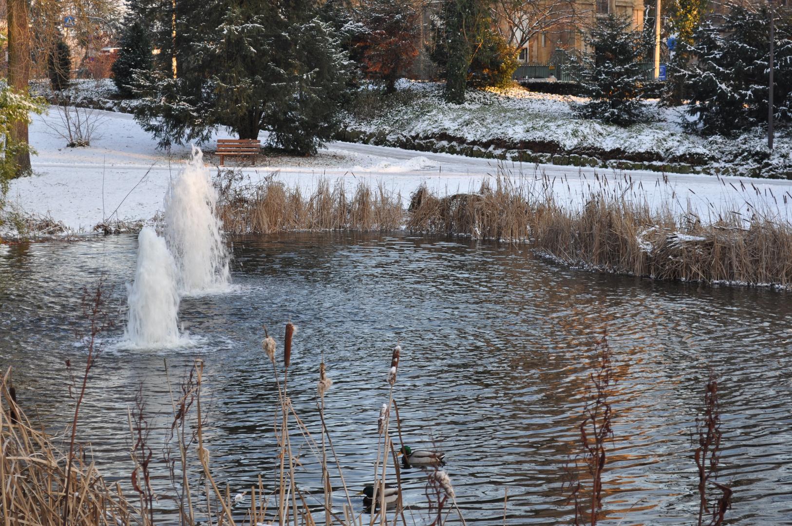 Parc du luxembourg5