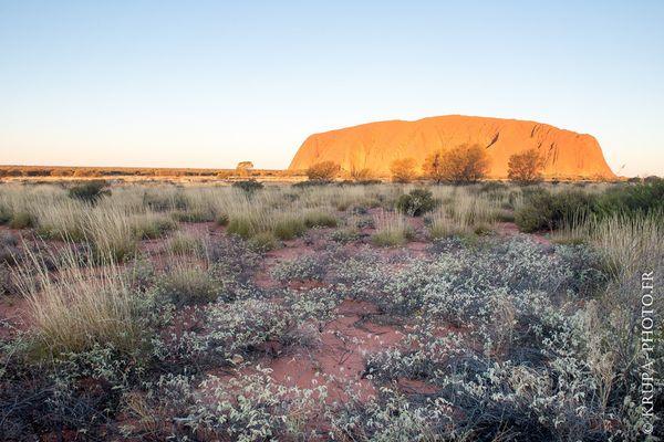 Parc national d'Uluṟu-Kata Tjuṯa
