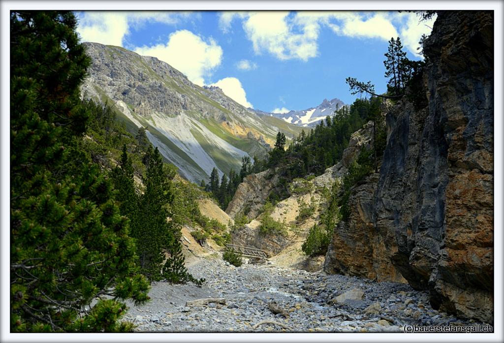 Parc National Svizzer XXIX;GR;CH