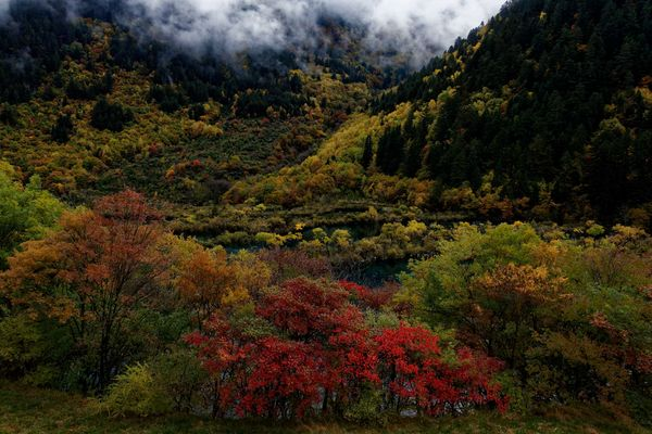 Parc naturel de Jiuzhaigou, Sichuan.