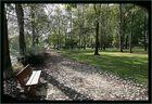 Parc sous les feuilles