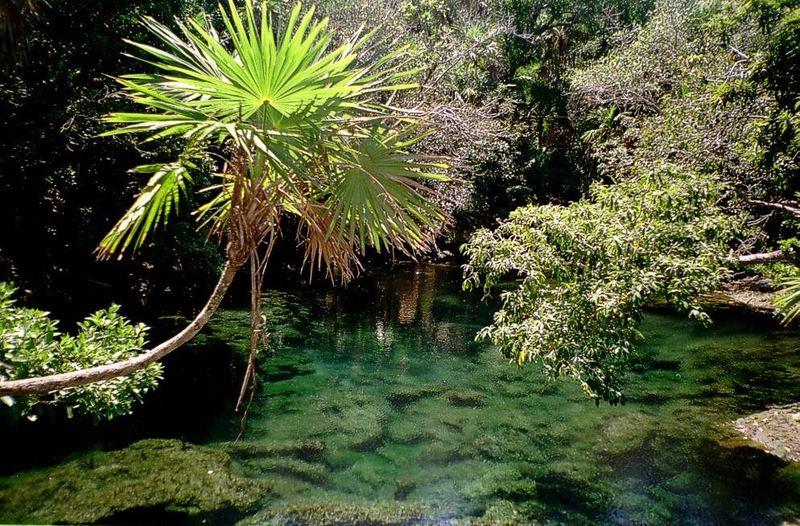 Parco di Xel - Hà Un cenote