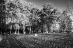 Parco, lido della Schiranna