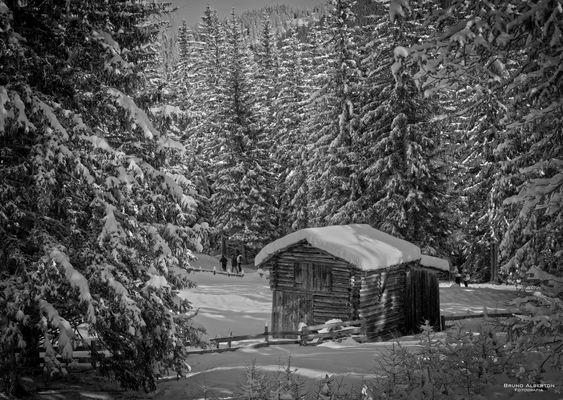 Parco Naturale Dolomiti Sesto