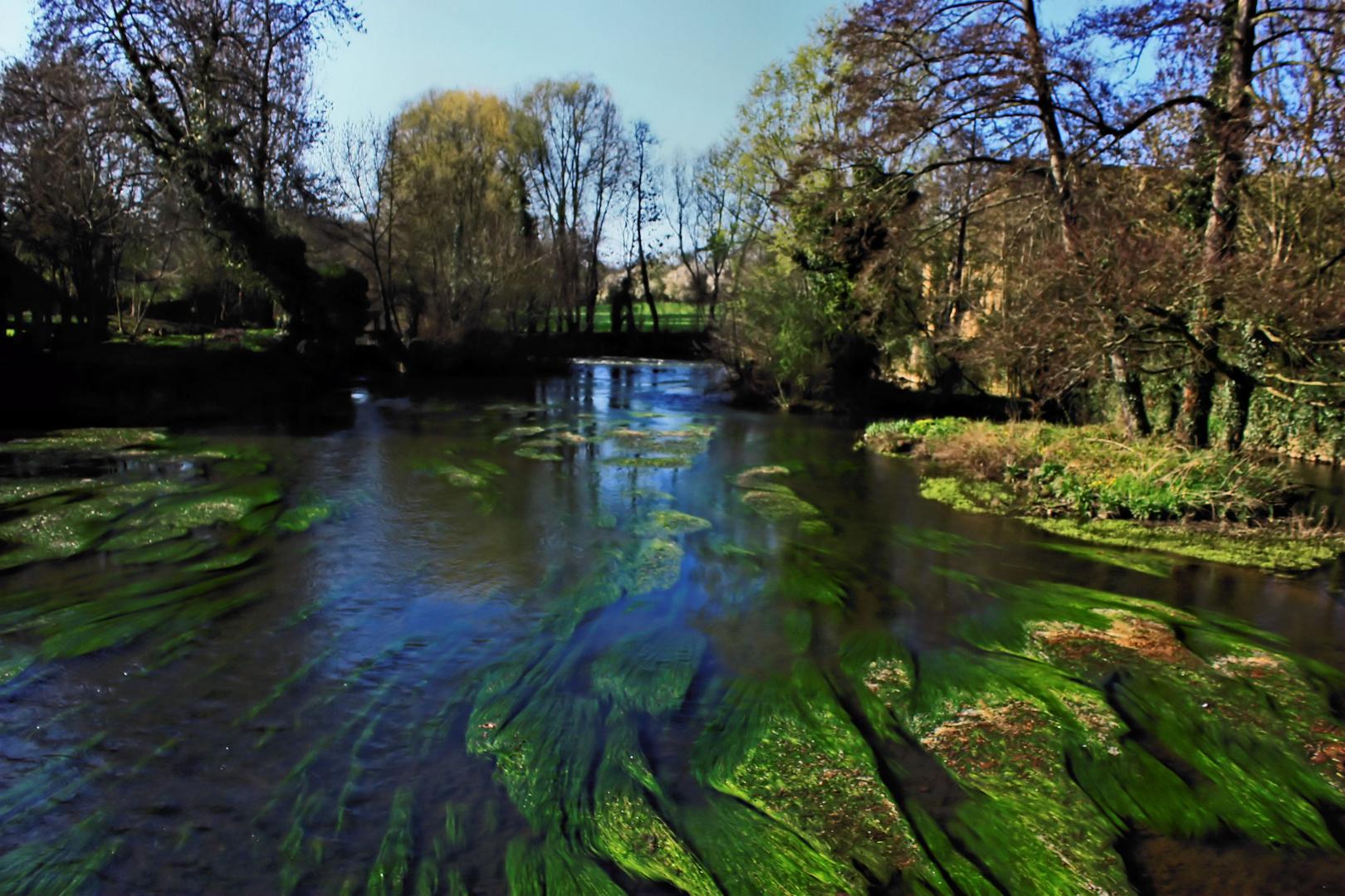 Paresser dans la rivière
