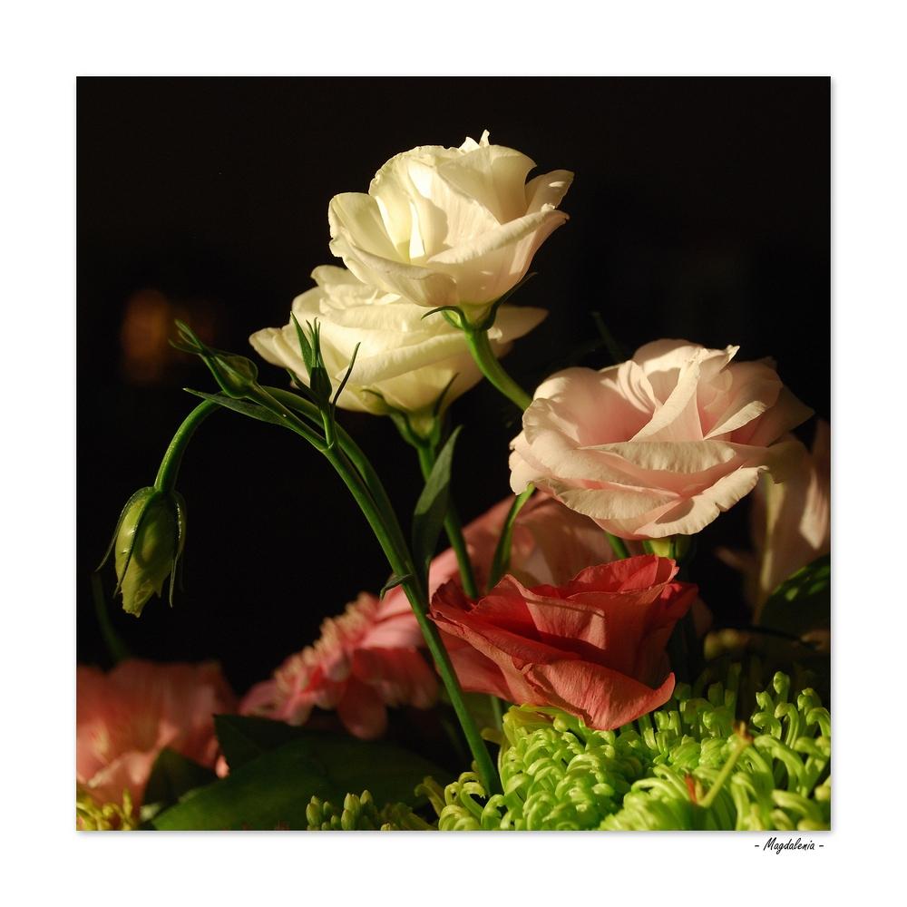 Parfum de roses, parfum de femmes