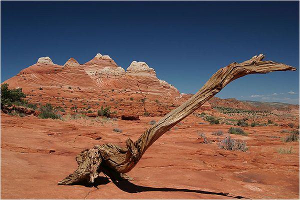Paria Canyon Wilderness, Arizona