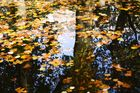 Parigi autunno 2009