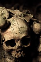 Paris - catacombs