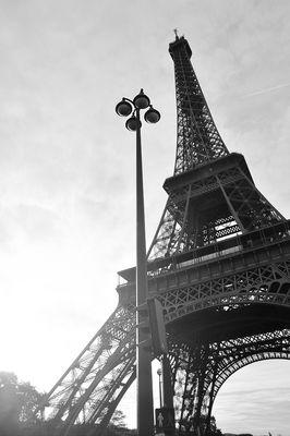 PARIS - Der Eifelturm.