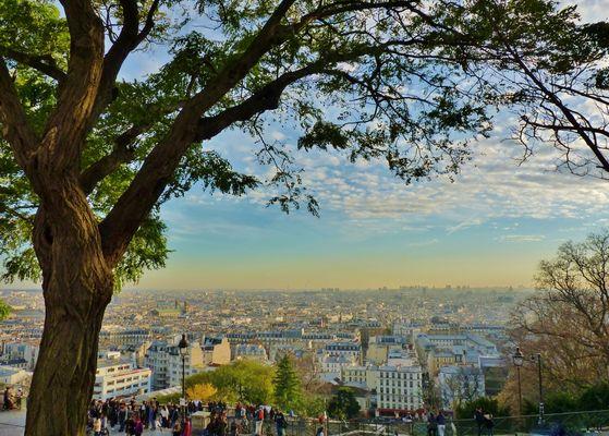 Paris et les secteurs de verdure.
