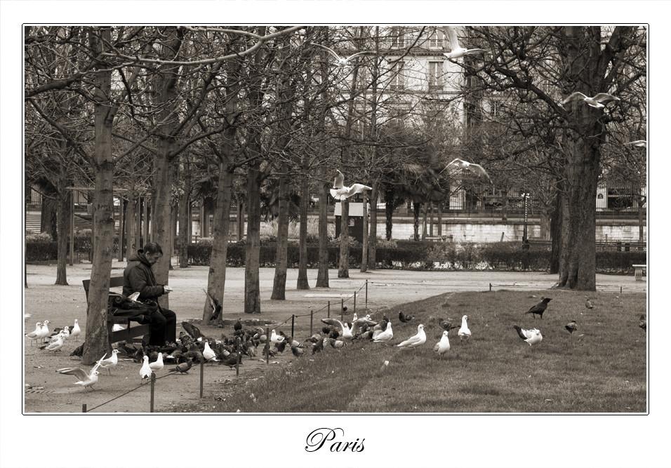 Paris - Fütterung