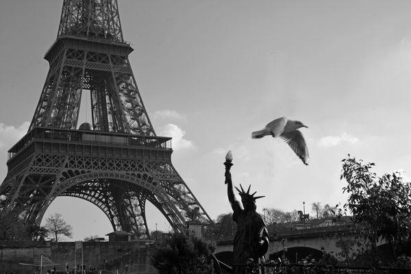 Paris Liberté