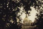 Paris - Stadt der Bäume