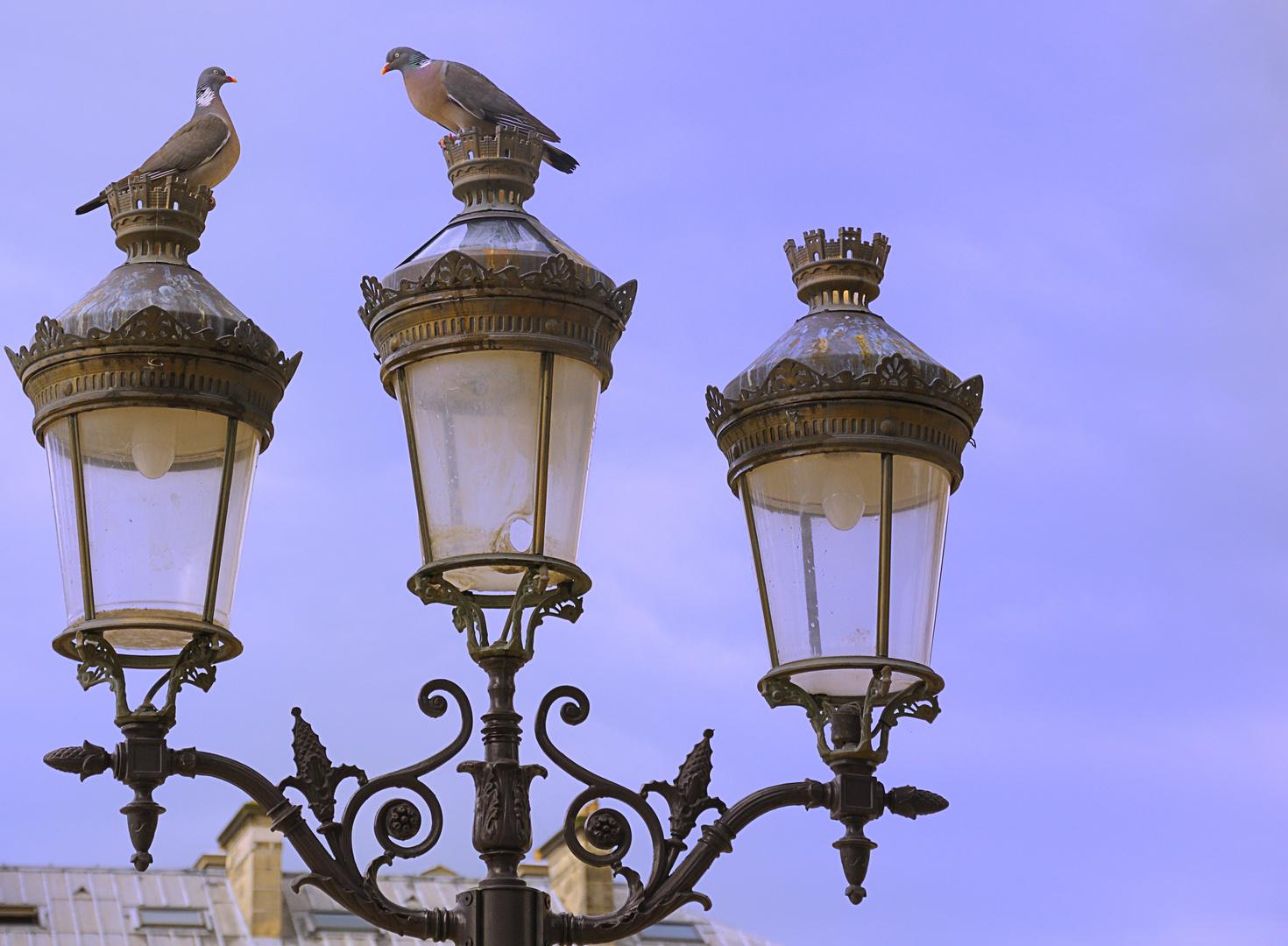 Paris Stadt der Liebe