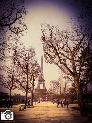 Paris, Tour Eiffel e Champs de Mars - 2015.