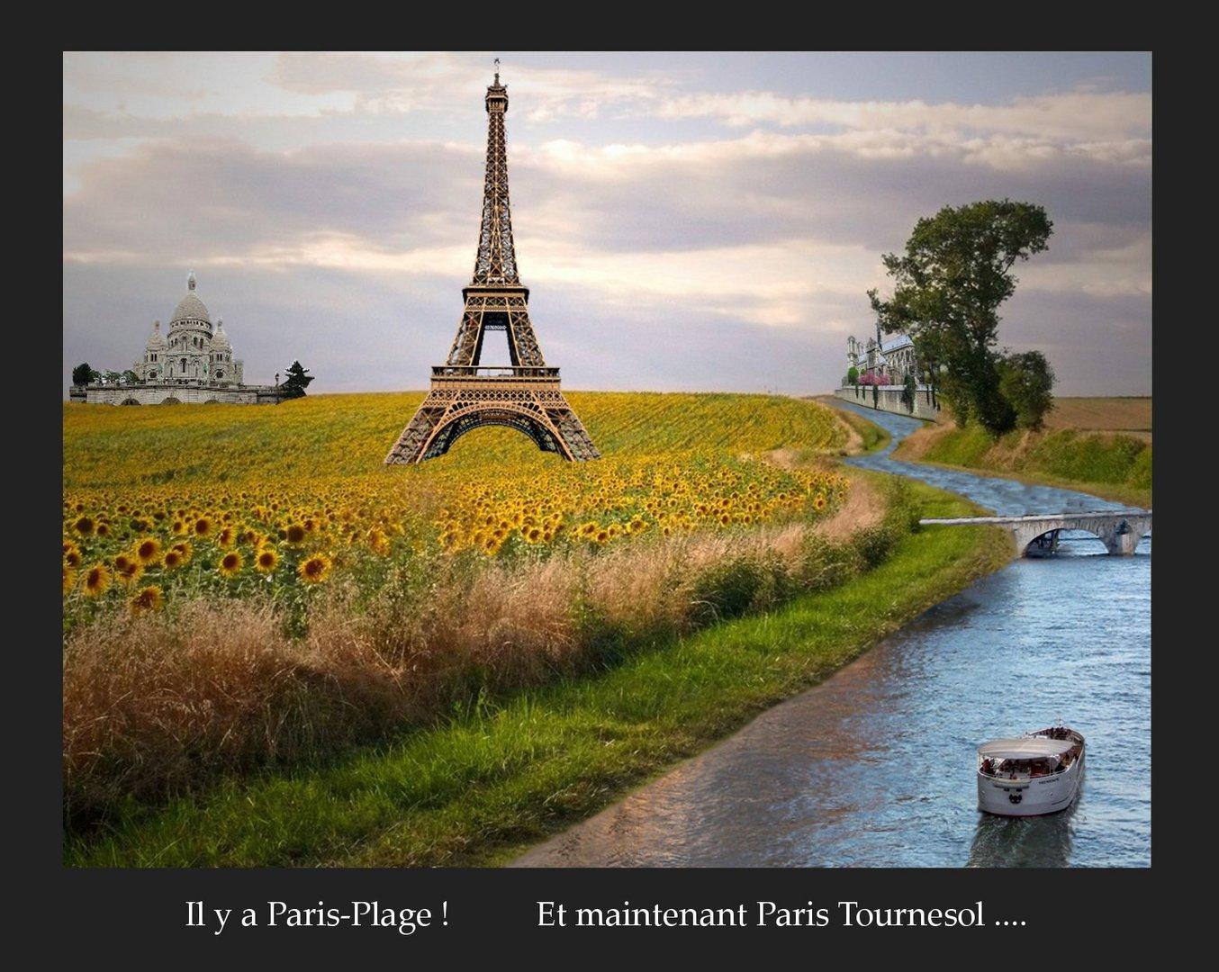 Paris tournesol..............