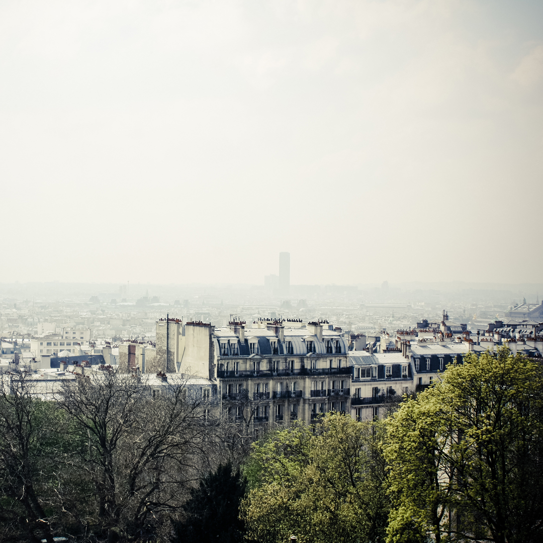 Paris, vu de Montmartre