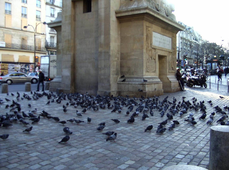 Pariser Tauben an der Porte Saint Denis