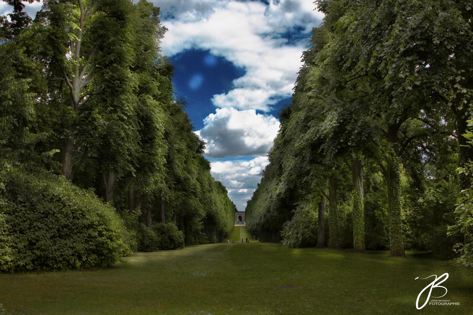 Park am Orangerieschloss