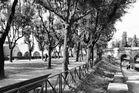 Park an der Engelsburg, Rom!