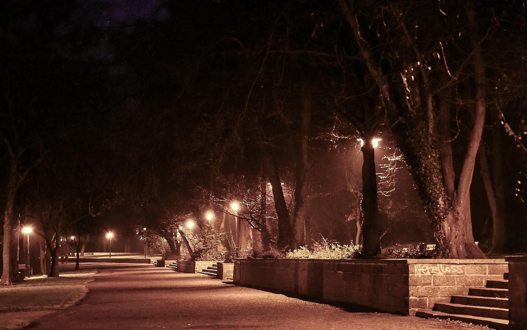 Park bei Nacht2