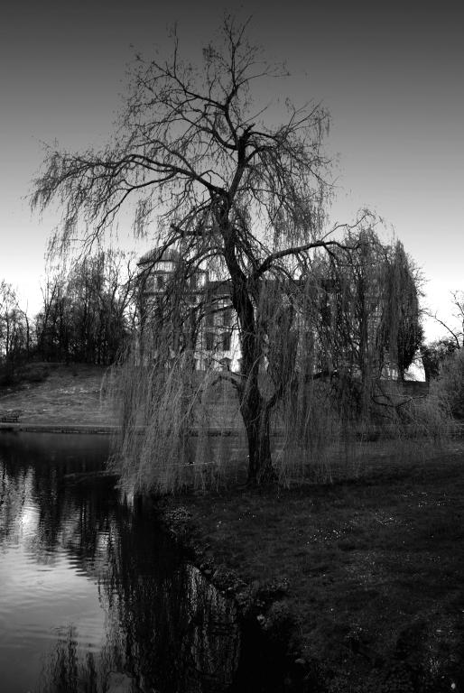 Park des Celler Schlosses