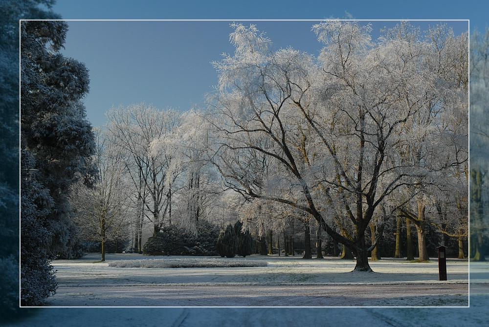 Park im Industrie-Schnee (2)