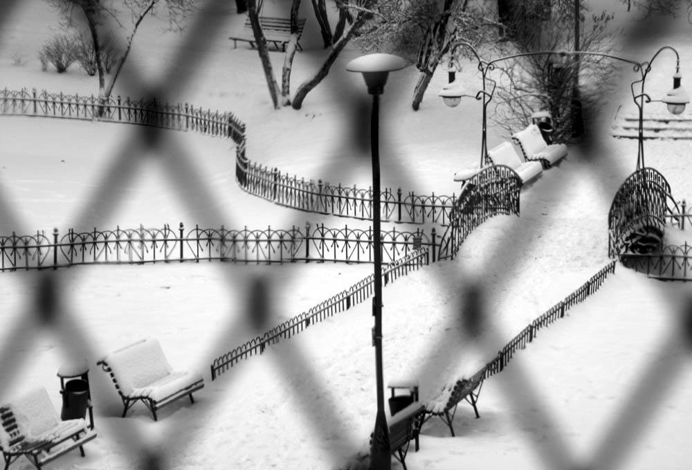 Park im Winter