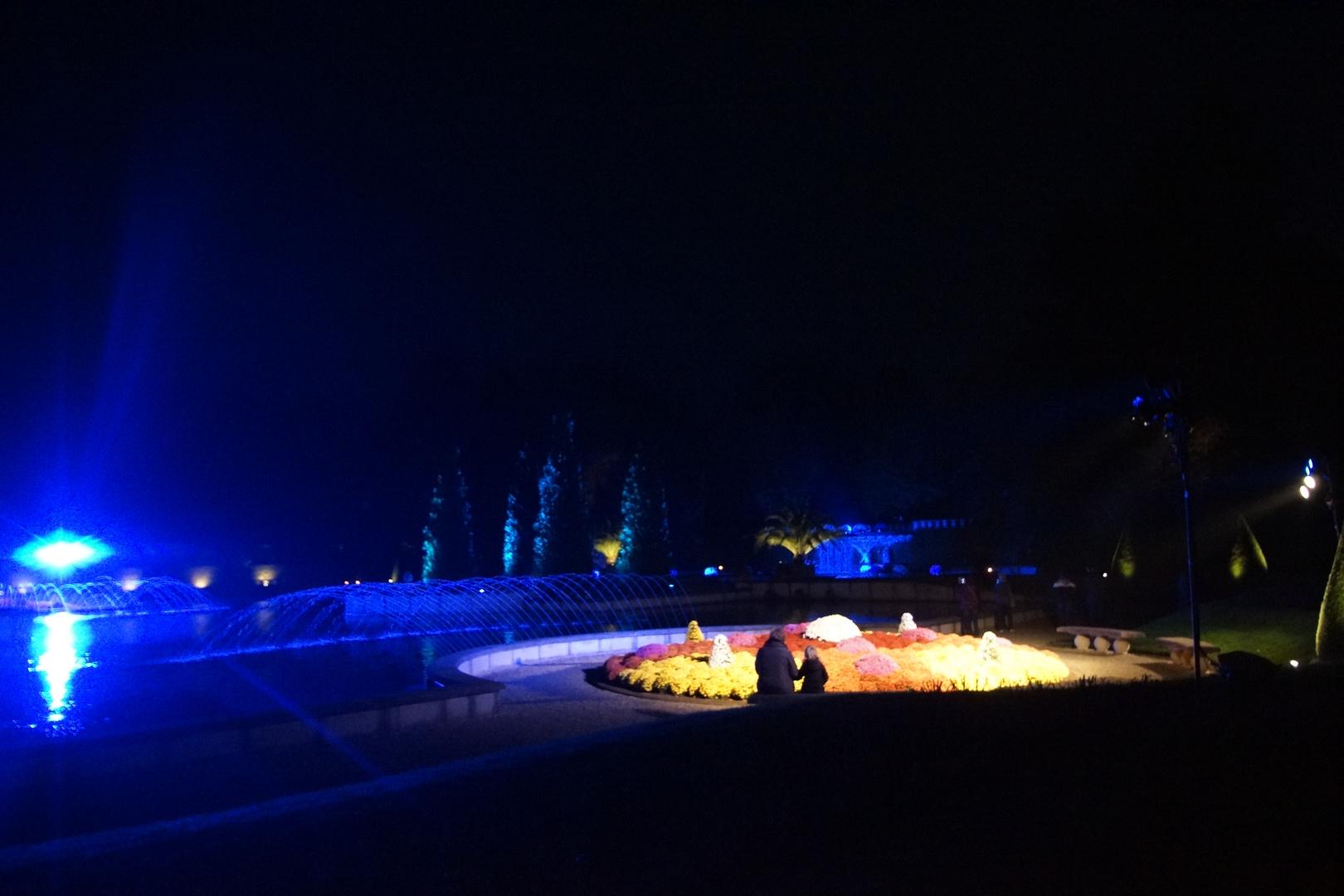 Park in Arcen bei Nacht