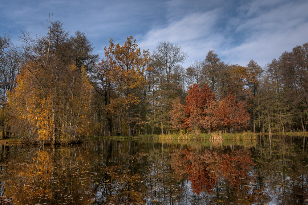 Park in Lübbenau/Spreewald 03