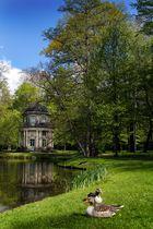 Park in Pillnitz