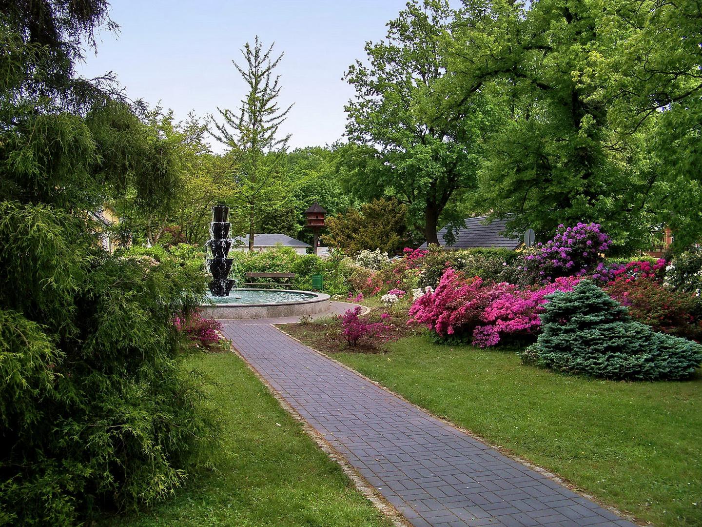 Park Kromlau X