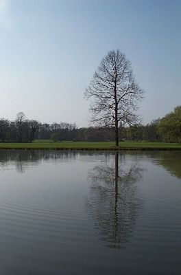 Park Schönbusch bei Aschaffenburg