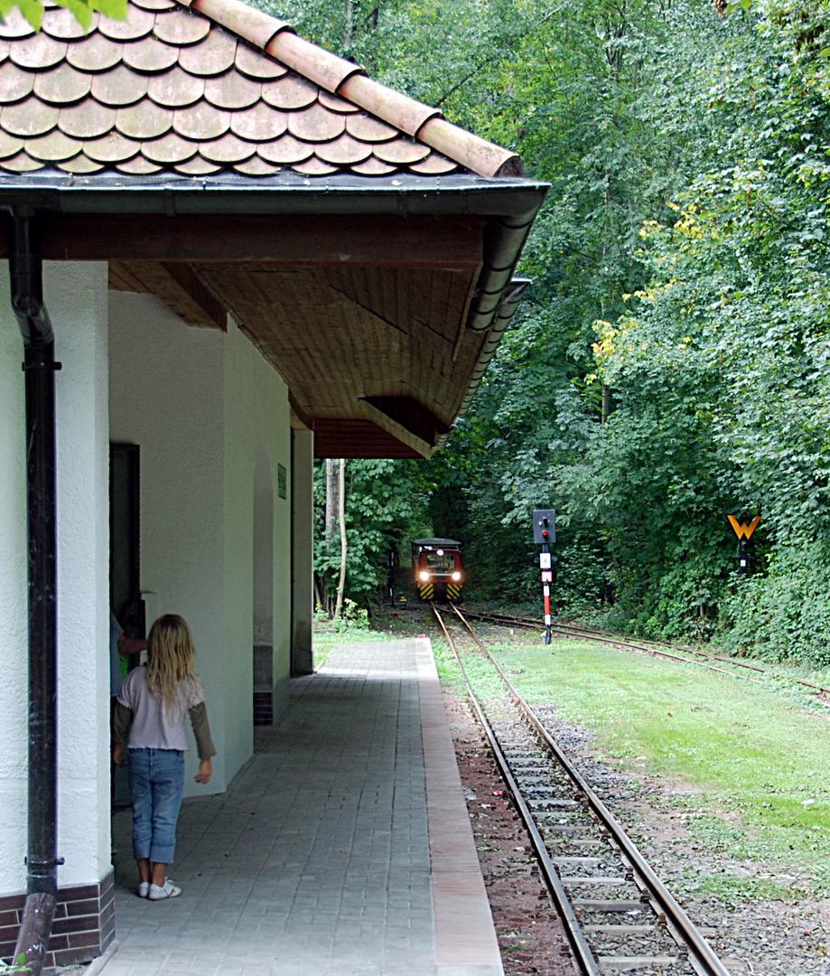 Parkeisenbahn Bernburg Einfahrt zur Endhaltestelle