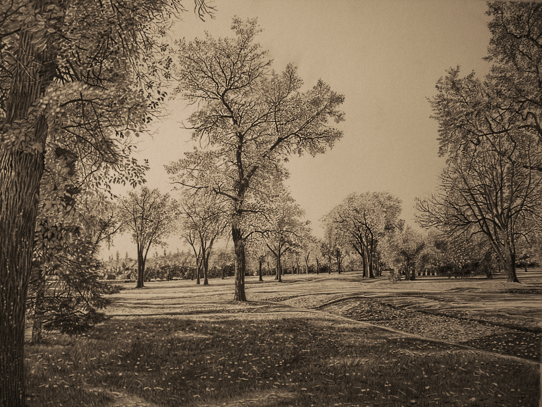Parklandschaft 2