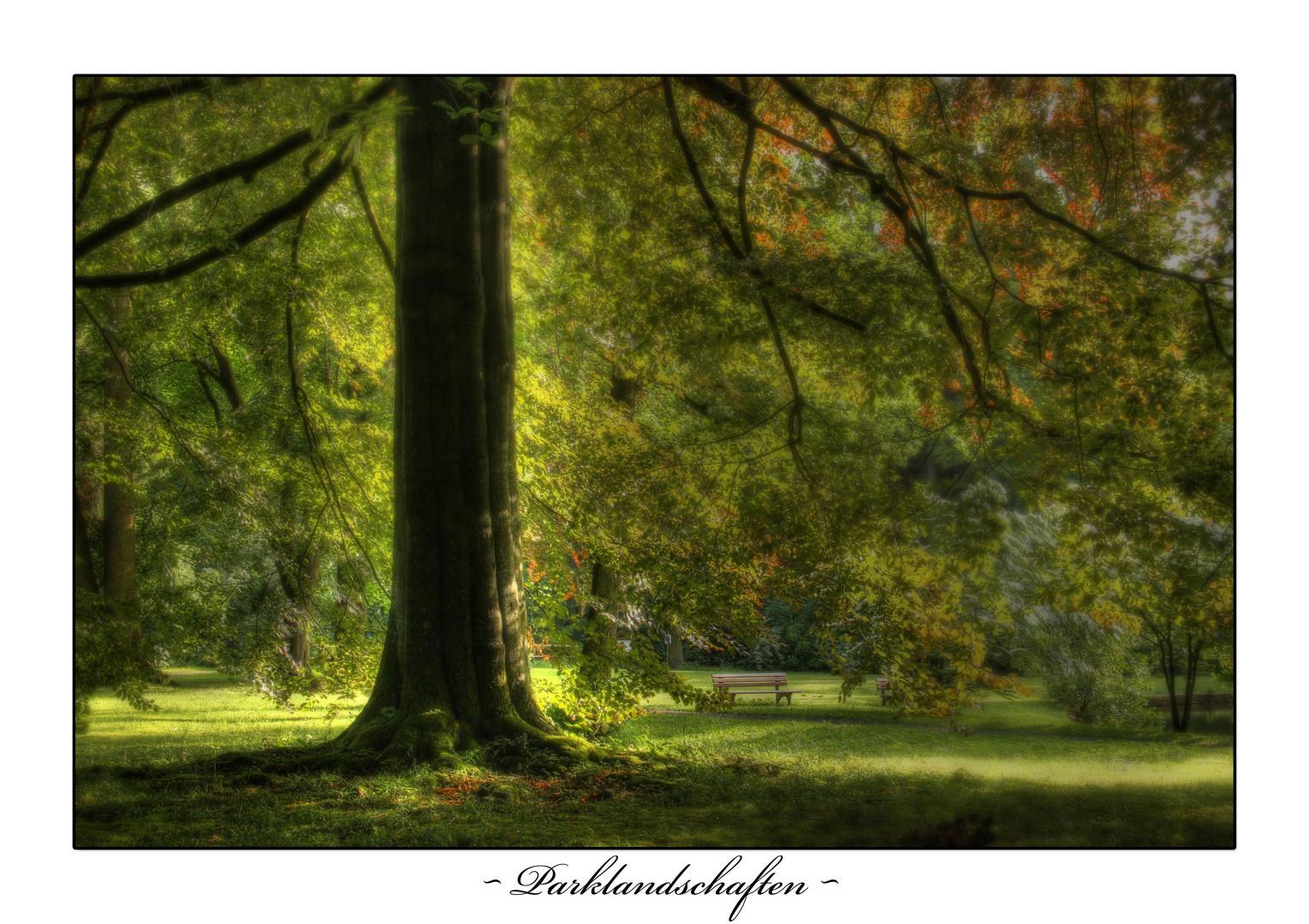 ~ Parklandschaft ~