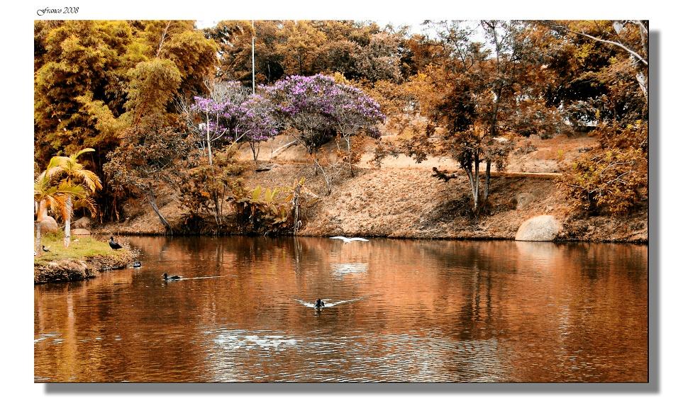 Parque de Agua Vermelho V