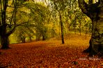 Parque Natural de Urkiola: