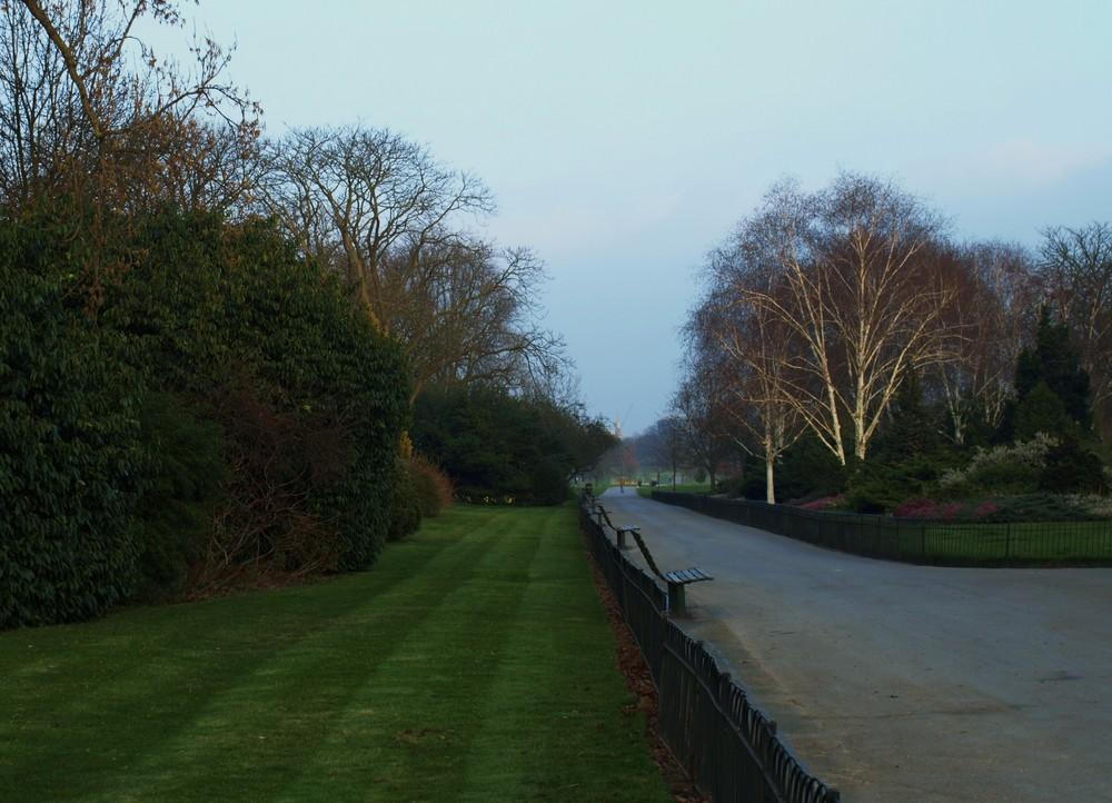 Parque Regent´s Londres 8...