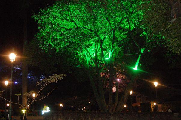Parques iluminados