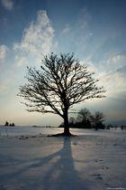 Parure d'hiver