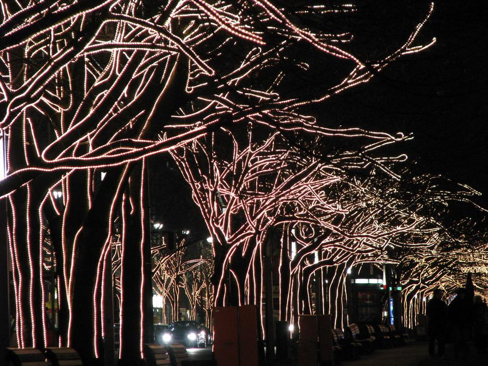 paseo con rboles iluminaci n de navidad imagen foto On iluminacion para arboles