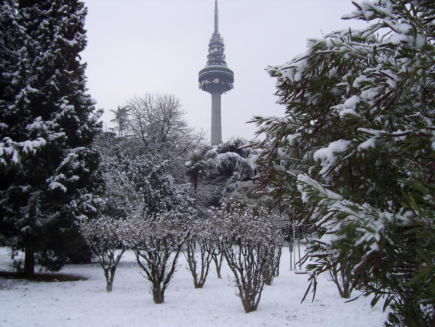 Paseo por el Parque nevado.....