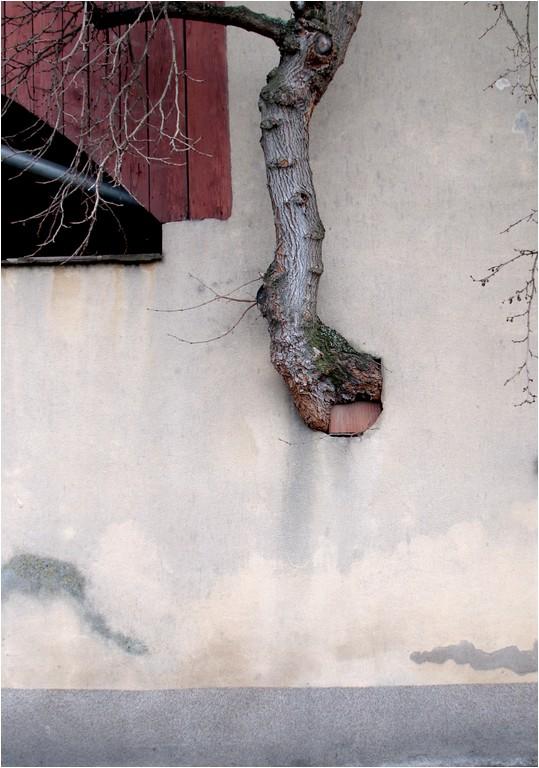 Passe muraille