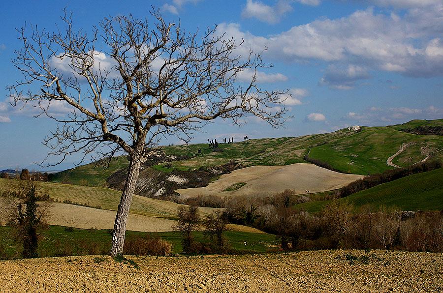 Passeggiando per paesaggi foto immagini paesaggi for Disegni di cabina di campagna