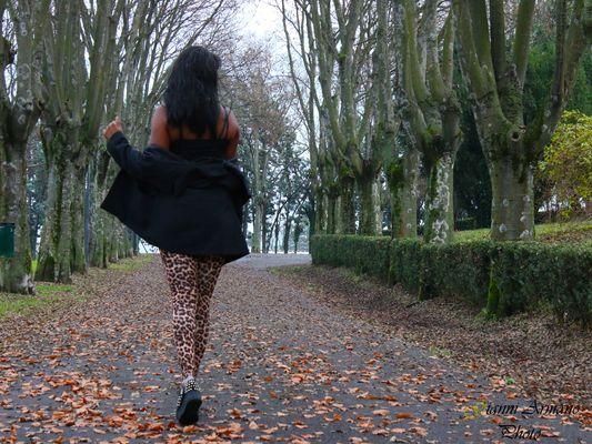 Passeggiare a dicembre