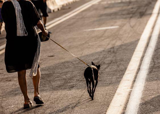 passeggiata noir