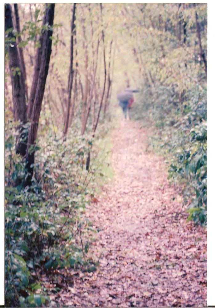 passeggiata romantica al ticino